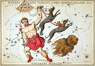 Boötes - Boötes as depicted in Urania's Mirror, a set of constellation cards published in London c.1825. In his left hand he holds his hunting dogs, Canes Venatici. Below them is the constellation Coma Berenices. Above the head of Boötes is Quadrans Muralis, now obsolete, but which lives on as the name of the early January Quadrantid meteor shower. Mons Mænalus can be seen at his feet.