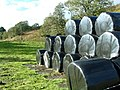 Silage Bales - geograph.org.uk - 268100.jpg