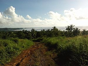 Silago, Southern Leyte - Image: Silago View