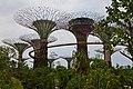 Singapore, Gardens by the bay - panoramio (1).jpg