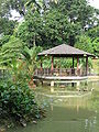 Singapore Botanic Gardens, Symphony Lake 11, Sep 06.JPG