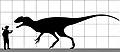 Sinotyrannus Scale To Human.jpg