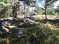 Skändlaberget på Hisingen, den 1 sept 2005, långröset och det runda röset..JPG