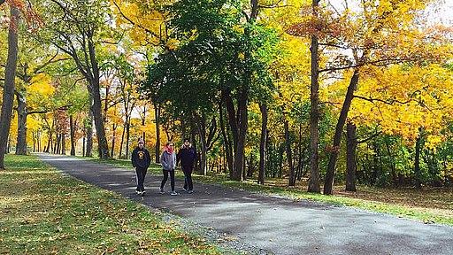 Skilman park