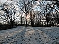 Snö i Eriksberg, Göteborg Jan 2012, Solen skiner mellan träden - panoramio.jpg