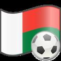 Soccer Madagascar.png
