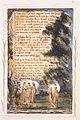 Songs of Innocence and of Experience, copy Y, 1825 (Metropolitan Museum of Art) object 21 NIGHT.jpg