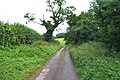 South Devon Lane - geograph.org.uk - 43758.jpg