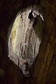 Speedwell Cavern 2015 08.jpg