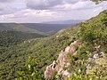 Sri Venkateswara National Park Tirumala Hills 04.jpg