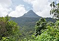 Sripada also know as Adams peak.jpg