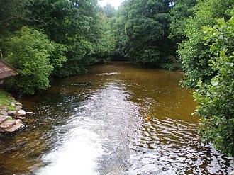 Ignalina District Municipality - Image: Srove (river) 1