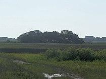 St Aug Fort Mose01.jpg
