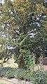 St John the Evangelist Pool Quay Powys, Wales 23.jpg