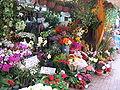 Stanley Market 4, Mar 06.JPG