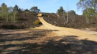 Hankley Common - Image: Steep track going north on Hankley Common geograph.org.uk 1249952