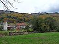 Steige-Forêt d'automne (2).jpg