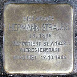 Photo of Hermann Strauss brass plaque
