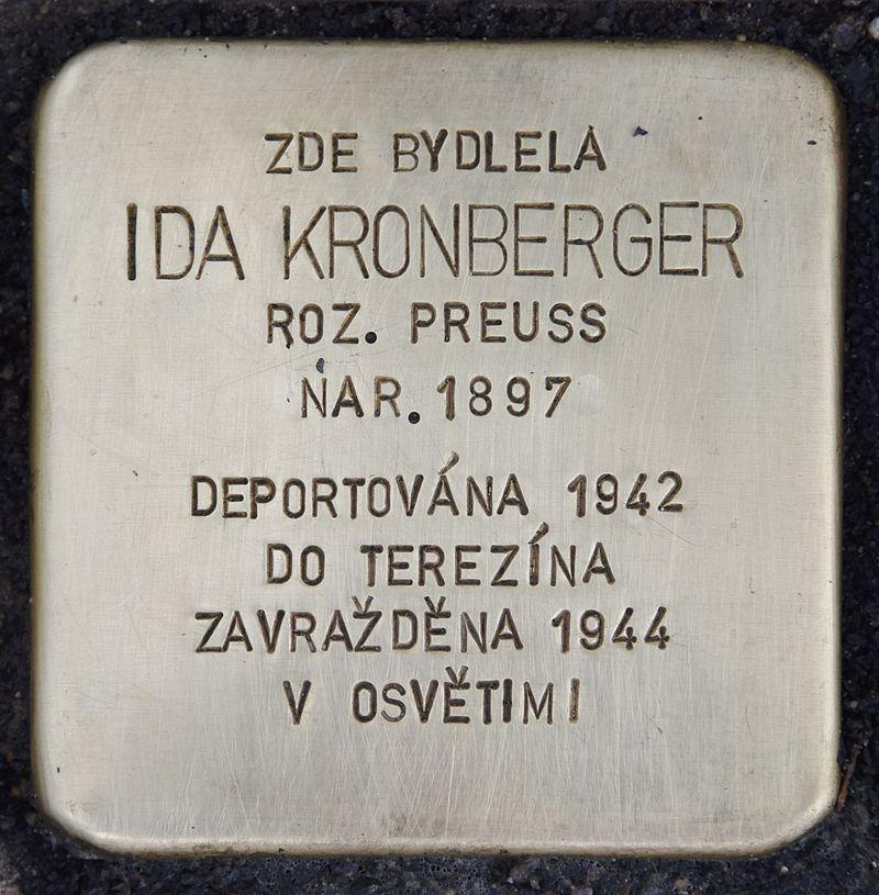 Stolperstein für Ida Kronberger.jpg