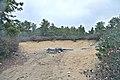 Stoner's Pit - panoramio.jpg