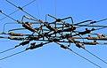 Stromleitungen für Obus (Trolleybus) ...2H1A1578WI.jpg