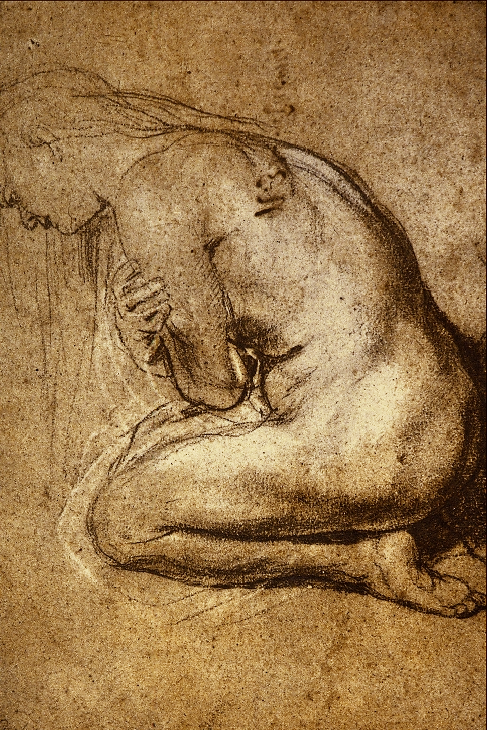 Study for a St. Mary Magdalen - Sir Peter Paul Rubens