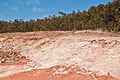 Sulfur Banks fumaroles2.jpg