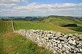 Sunnyside Hill - geograph.org.uk - 1397255.jpg