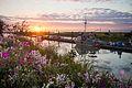 Sunset at Scotch Pond (7860545772).jpg