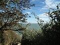 Sur la falaise de Meschers.JPG