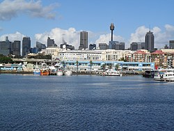 Sydney Fish Market view from Glebe.JPG