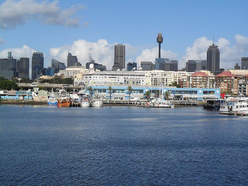 Sydney Fish Market view from Glebe