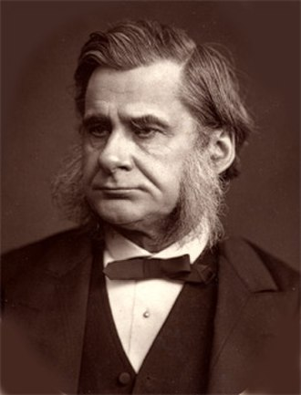 Thomas Henry Huxley - Woodburytype print of Huxley (1880 or earlier)