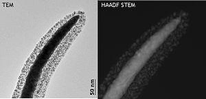 transmission electron microscopy book free download
