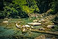 Taroko National Park Hehuan Creek Wang Ta-Chih 038.jpg