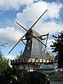 Tarp Windmuehle 2008-10-09.jpg