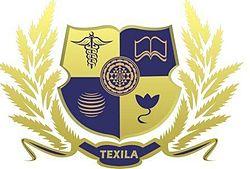 Texila American University Logo.jpg