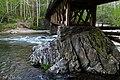 The Bridge Leaving Elkmont (26914757957).jpg