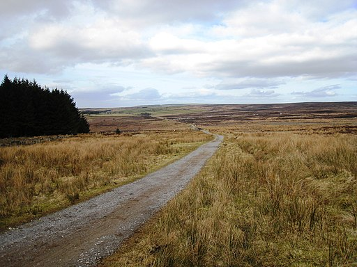 The Cleveland Way near Thimbleby Moor - geograph.org.uk - 1766354