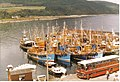 The Fleet Carradale Harbour, 1980's - geograph.org.uk - 58051.jpg