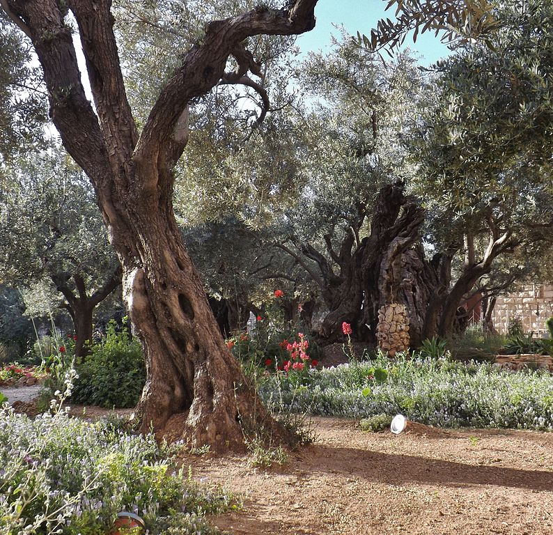 Have You Been to Gethsemane
