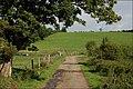 The Green Road near Ballyroney (1) - geograph.org.uk - 534873.jpg
