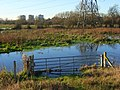 The Kennet floodplain, Reading - geograph.org.uk - 633738.jpg