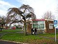 The Octagon Cyber Cafe, New Addington - geograph.org.uk - 1611914.jpg