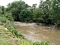 The River Dearne the day after flooding. - geograph.org.uk - 477610.jpg