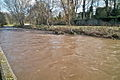 The River Dodder In Flood.jpg