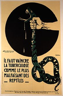The strangling of a poisonous snake, representing the crushi Wellcome L0029946.jpg
