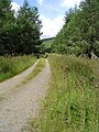 The track to Stennishope - geograph.org.uk - 508031.jpg