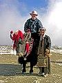 Tibet -5792 - Yak and rider.jpg
