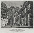 Tintern Abbey (1132679).jpg
